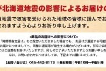 台風21号及び北海道地震の影響によるお届けの遅延について
